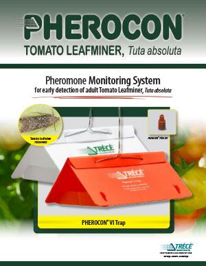 Pherocon Tomato Leafminer Flyer Thumbnail