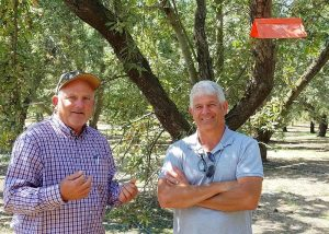 Brad Higbee, Director of Field Research for Trécé and Dirk Ulrich, almond grower/consultant