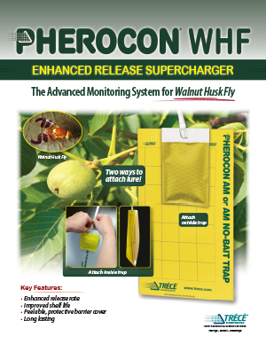 Pherocon Walnut Husk Flyer Thumbnail